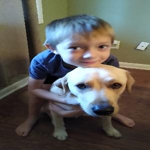 adoptable Dog in Murfreesboro, TN named Bolt
