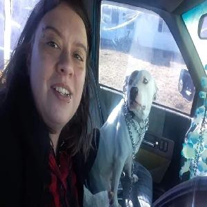 adoptable Dog in Norman, OK named Freya