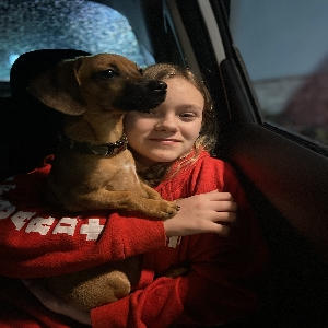 adoptable Dog in Charles Town, WV named Kingston or King for short